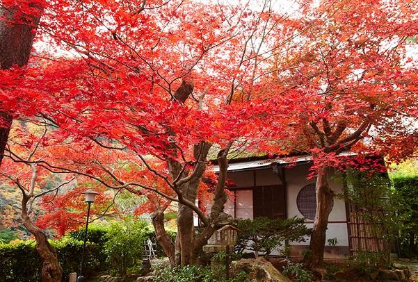 Kyoto Chabad